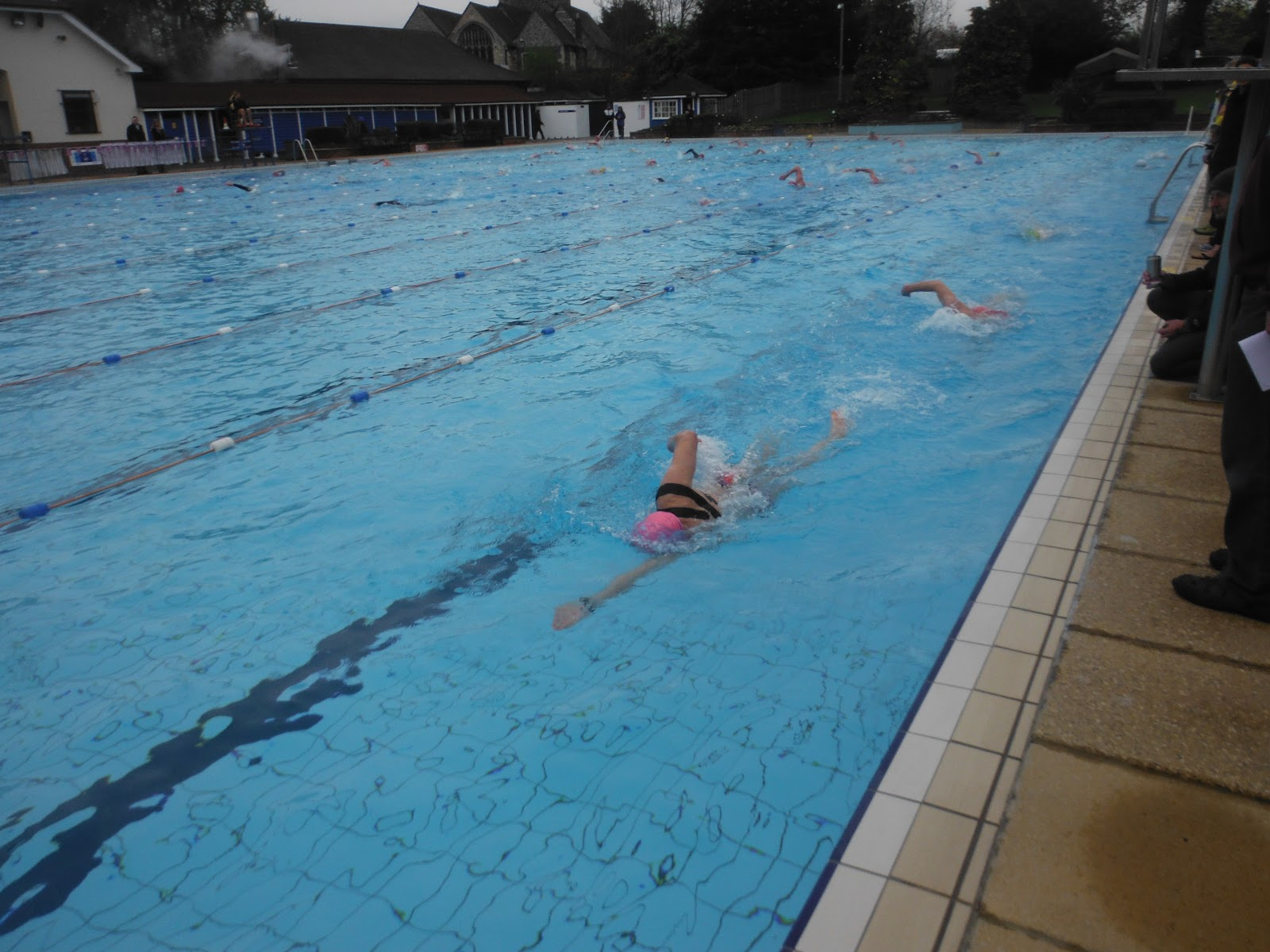 how to swim long distance breaststroke