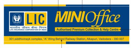 MIni LIC Offices