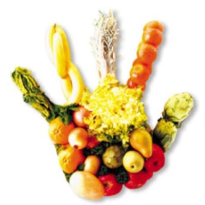 El blog para las cuidadoras cinco h bitos saludables para los ni os - Titulo manipulador alimentos ...