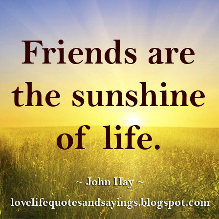friendship the sunshine of life essay