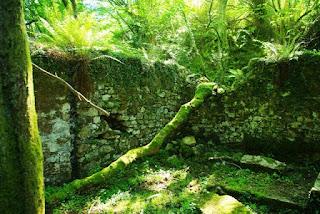 Sierra del Sueve, la Biescona, antigua mina de La Toya