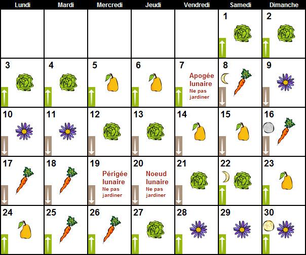 Au tour du jardin septembre 2012au tour du jardin potager for Calendrier lunaire pour le jardin