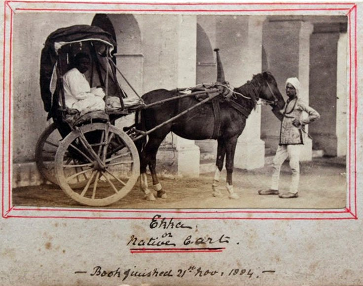 Ekka (Native Carriage) - Vintage Photograph, India 1884