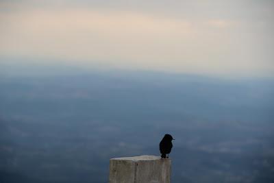 Do alto da Serra da Piedade: foto Danielli Vargas