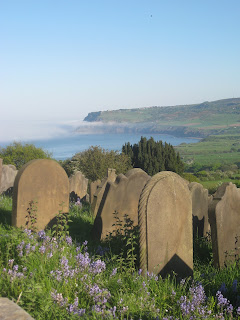 Wildflowers overlooking Robin Hood's Bay