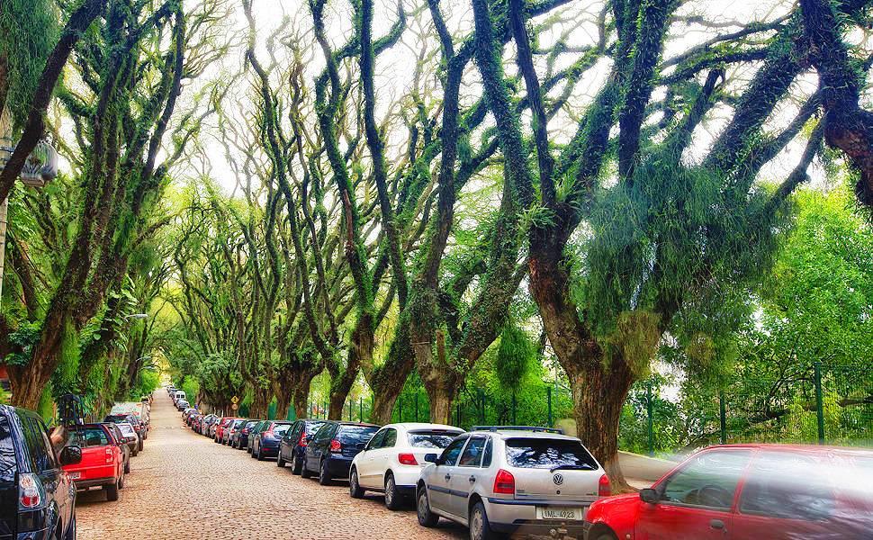 rua mais bonita do mundo poa porto alegre rs brasil rua gonçalo