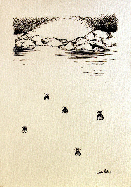 Drawing on paper of rocks, water, sky and gnats
