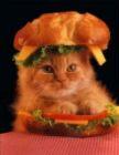 Cat Sarnie