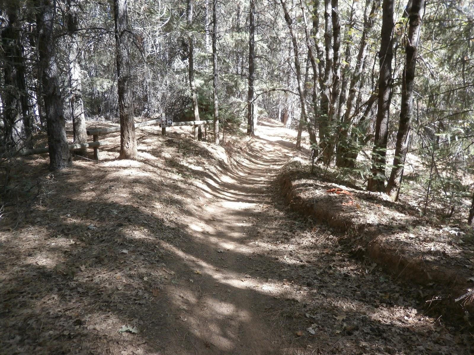 Roland Sturm Mountain Biking Across Northern California