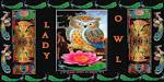LADY OWL (OvO)