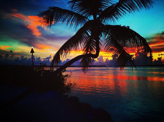 _____________ ISLAND LIVING