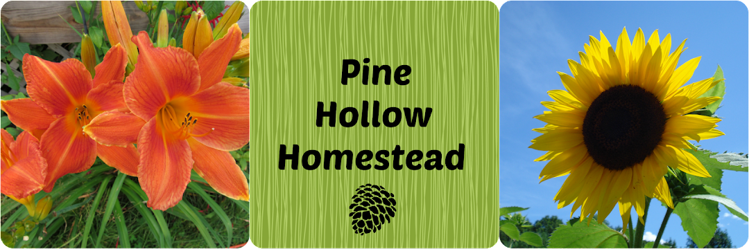 Pine Hollow Homestead