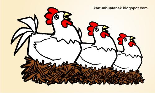 gambar kartun ayam