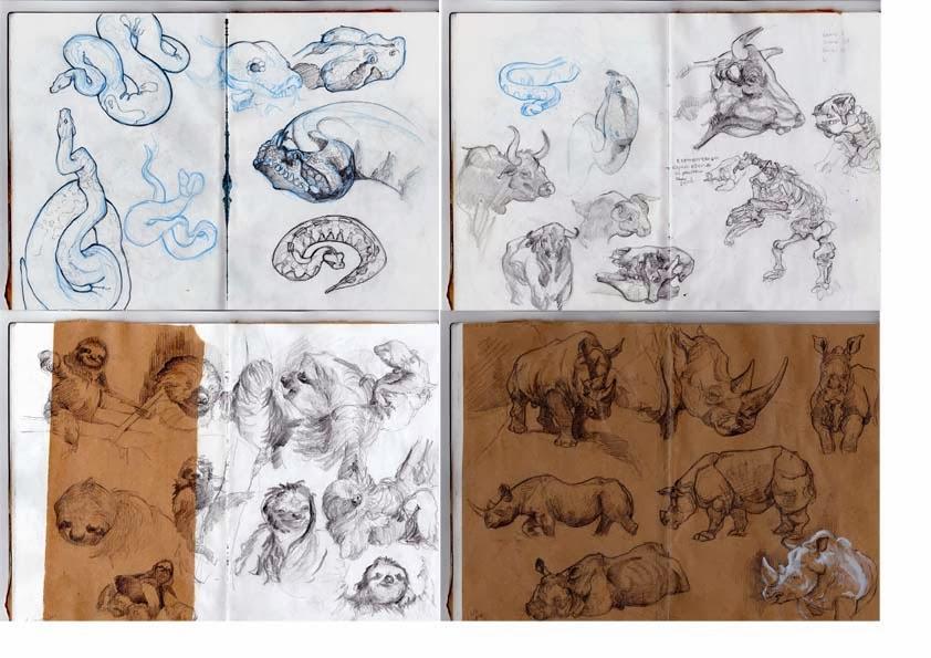 Le cahier des monstres civilis s carnet de croquis animaux - Croquis animaux ...