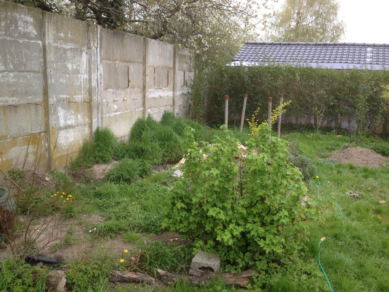 le jardin de fredouille on commence donc par ici On jardin oriente est