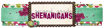2nd Grade Shenanigans