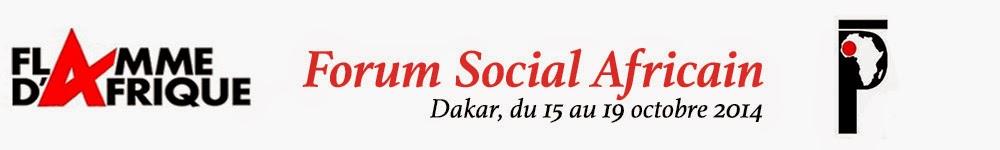 Forum Social Africain 2014