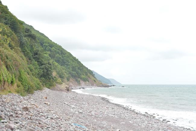 bleak misty beach coastline sea ocean cliffs