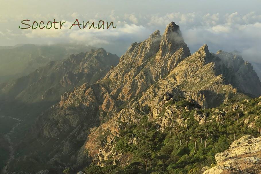Socotr Aman