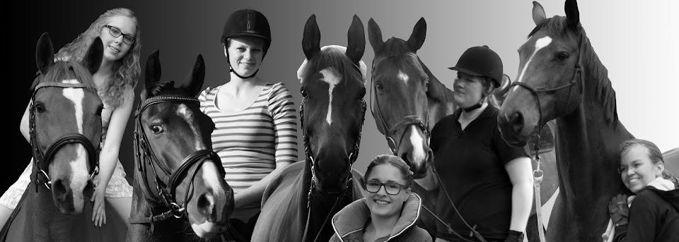 Gefluester über Pferdemist und Wendyträume