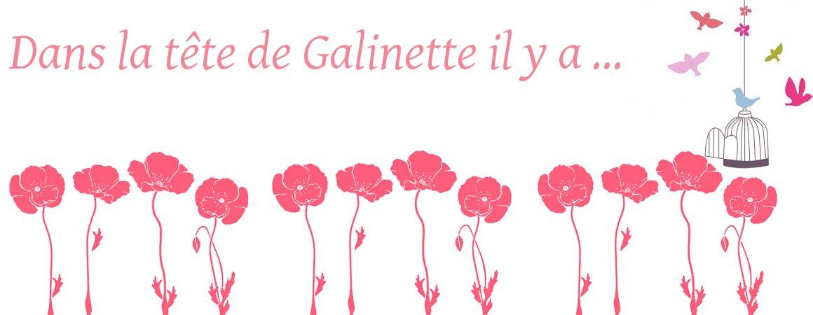 Dans la tête de Galinette il y a ....