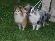 Larry & Luna