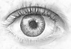come disegnare gli occhi umani