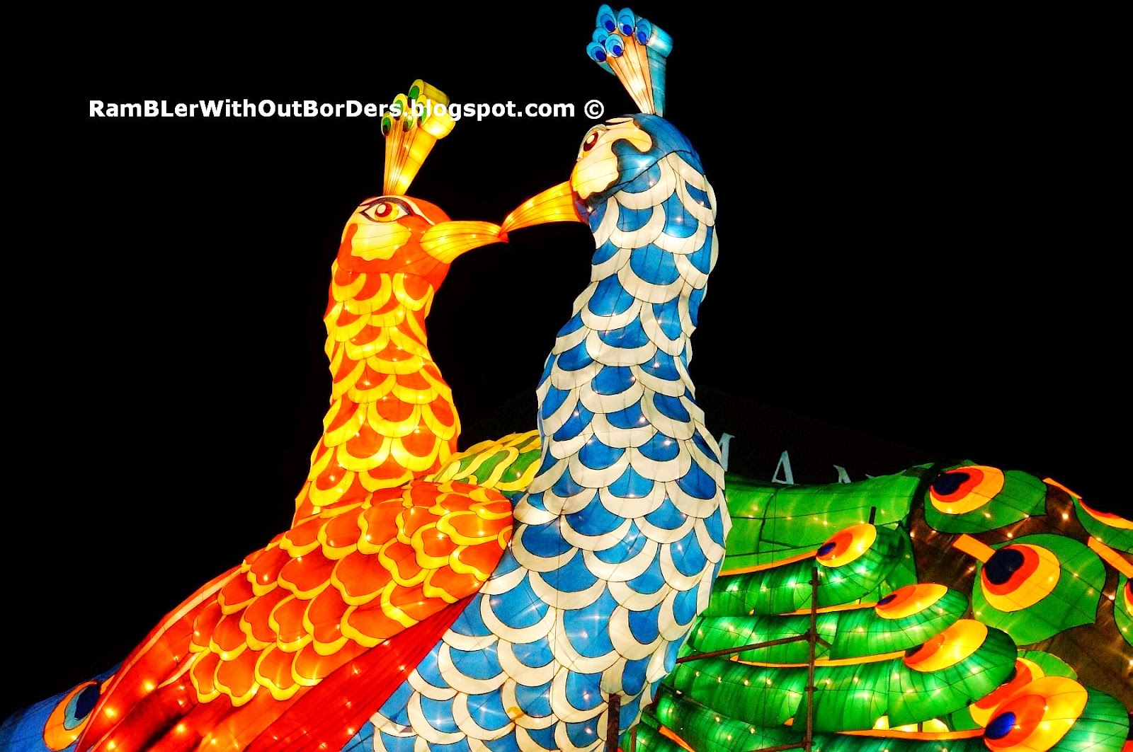 Peacock Couple, River Hongbao 2015, Singapore