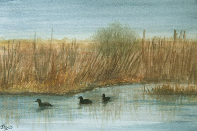 watercolor painting by Jennifer Kistler mud hens on river number two copyright 2012