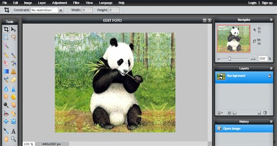 Edit Foto Dengan Pixlr Editor