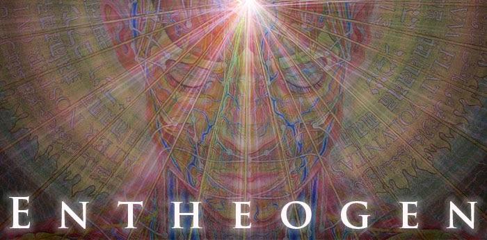Image result for Entheogen