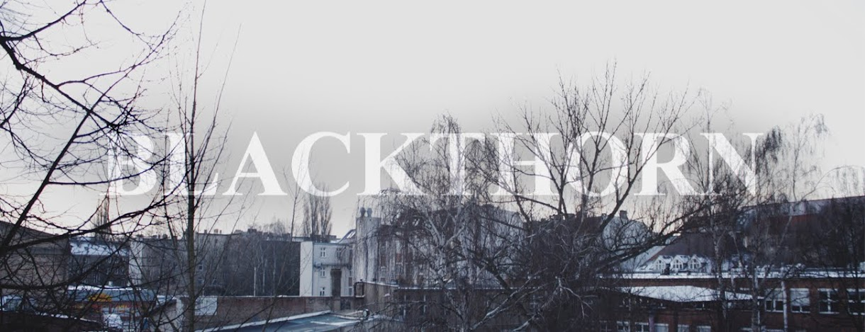 Blackthorn//Blog by Sonja