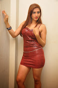 Actress Rishika Sizzling Photo shoot Gallery-thumbnail-19
