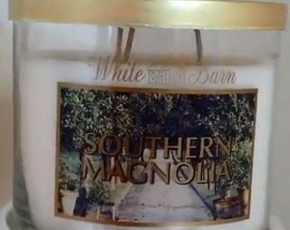 Test scent spring  2013 Southern Magnolia  and video bloggers