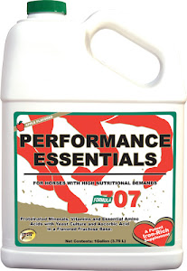 PERFORMANCE ESSENTIALS