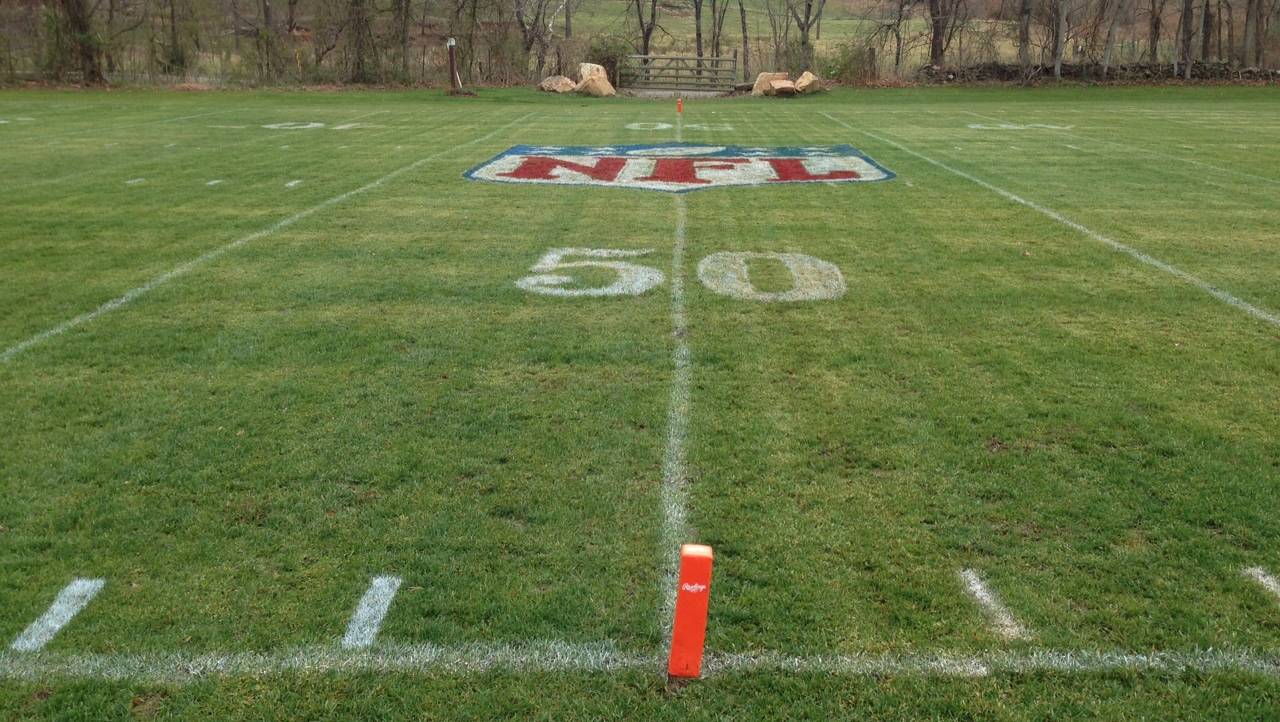 Football Field In Your Backyard : Backyard Football Field Images & Pictures  Becuo