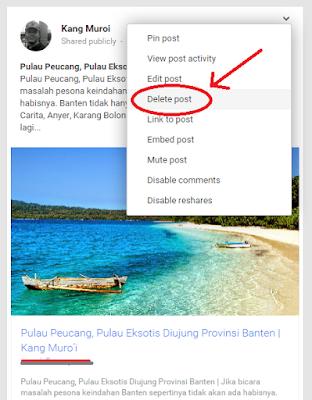 Menghapus Postingan di Google Plus