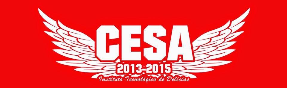 CESA 2013-2015