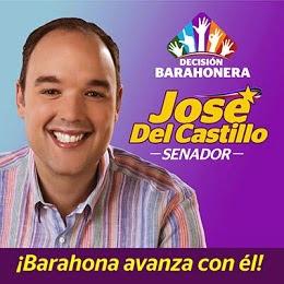 José Del Castillo Senador por Barahona