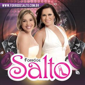 CD FORRO DE SALTO - CD VERAO 2013