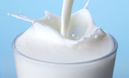 why is milk good for you essay