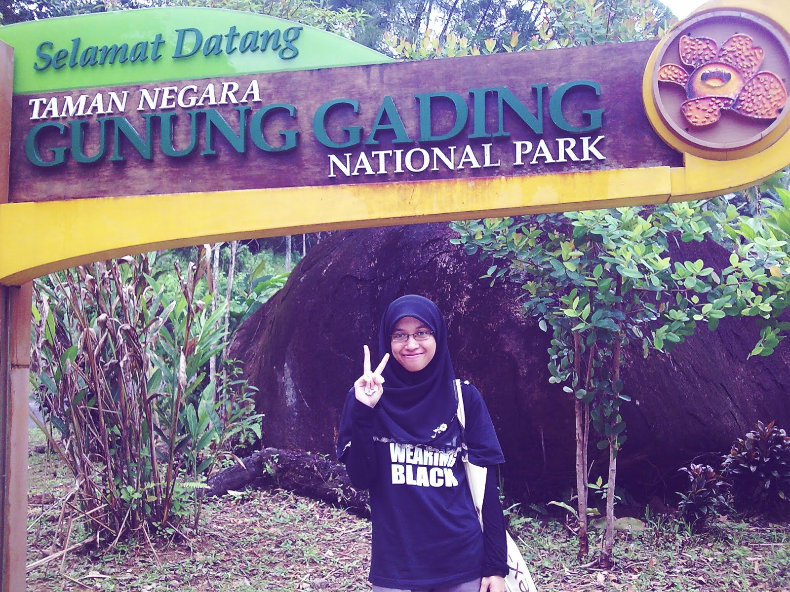 HIKING GADING MOUNT