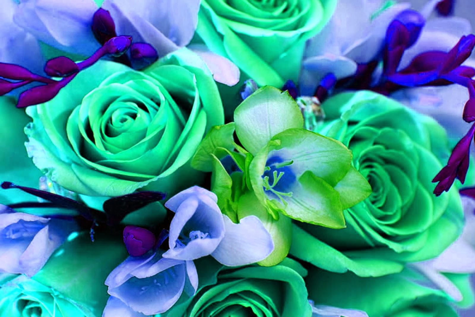 Doodlecraft colorful bouquet of flowers wallpaper background for Pics of colourful roses