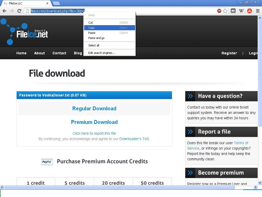 fileice premium account generator no survey flucnipo