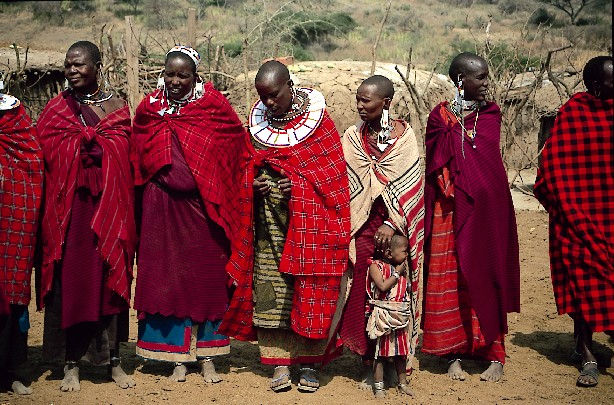 the masai population h...