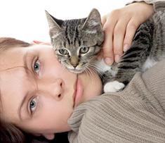 cómo elegir un gato