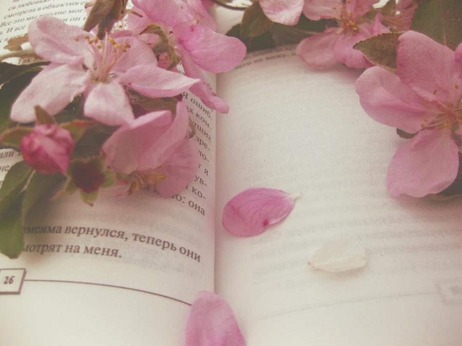 Práve čítame a pripravujeme: