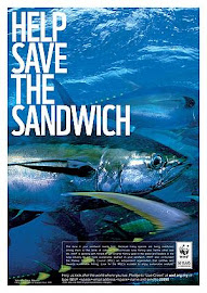 Save The Sandwich!