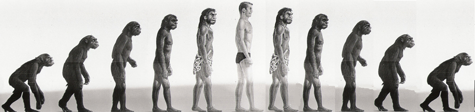 homo sapiens and the great apes Currently known genetic differences between humans and great apes and to suggest avenues for future re-search that homo sapiens shared a common ancestor with.