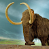 Un grupo de científicos se propone, por vez primera clonar un mamut